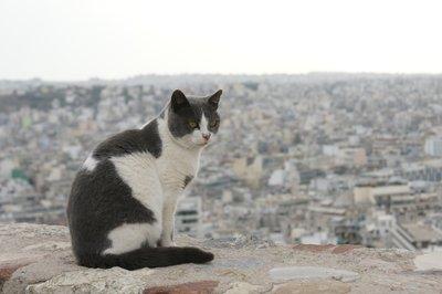Athens_074.jpg