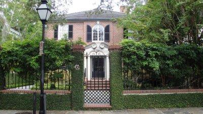 Charleston ivy