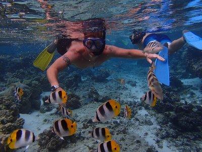 Curt snorkeling