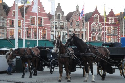 Market square with horses