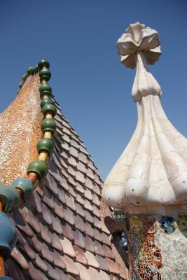 dragon roof