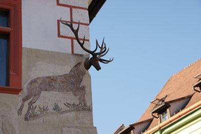 Deer building