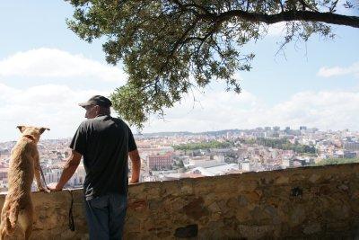 mans best friend looking over Lisbon