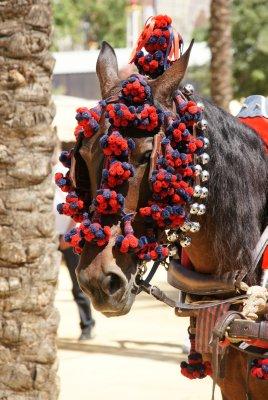 Jerez horse fair