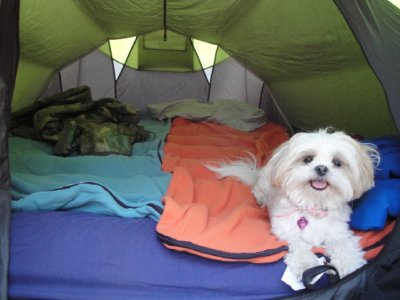 Emma's first tent