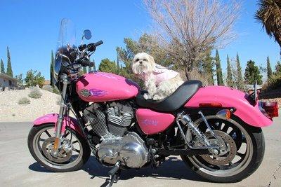 Emma and the new bike