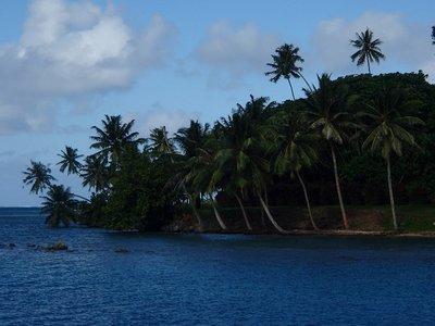 French Polynesian view