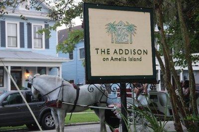 Addison on Amelia