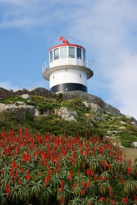 Lighthouse with red flowers