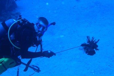 Steve hunting lionfish