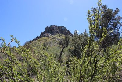 Thumb Butte from Below