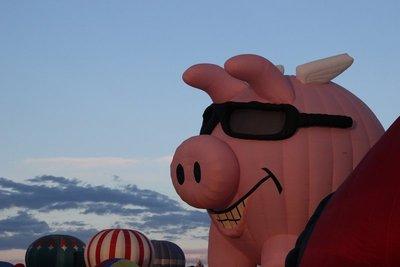 big_pig.jpg