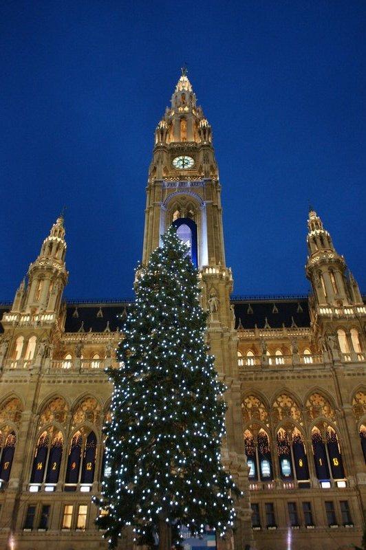 Christmas tree at Rathaus