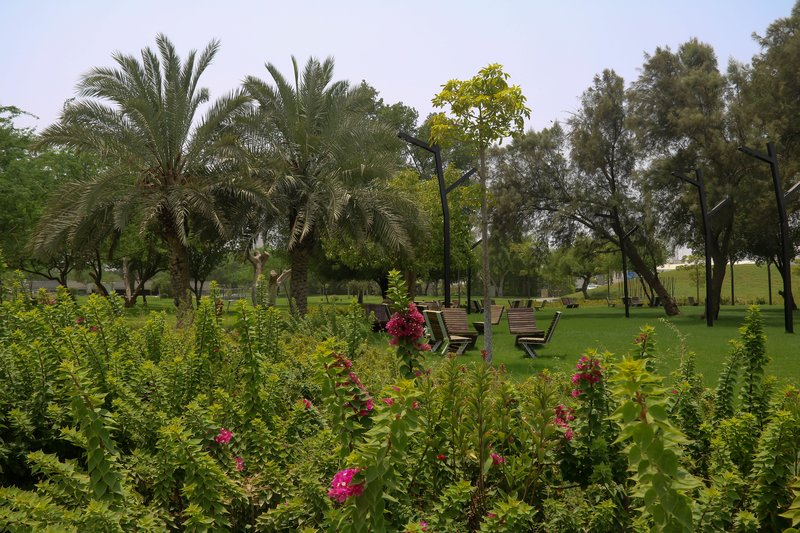 large_Greenery_in_Martyr_Park.jpg