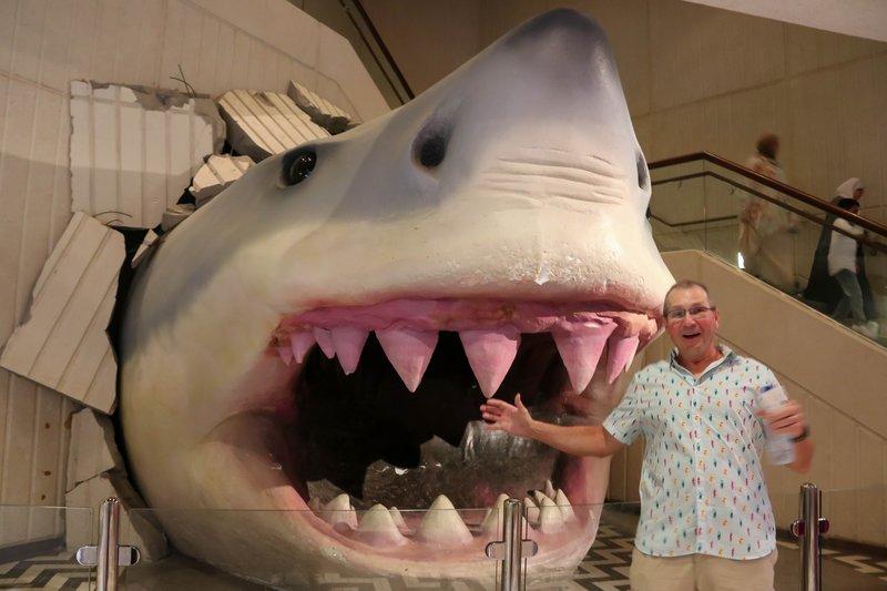 large_Shark_attack.jpg