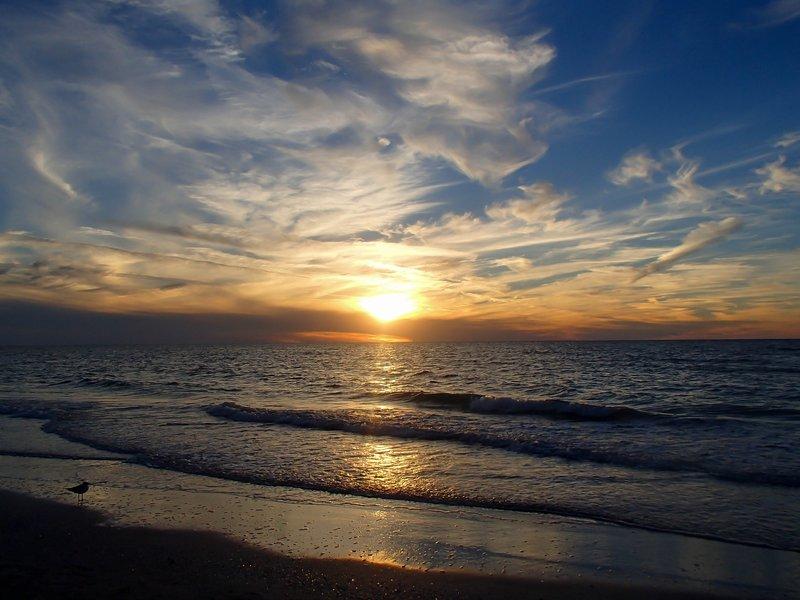 large__sunset_on..lf__1_of_1_.jpg