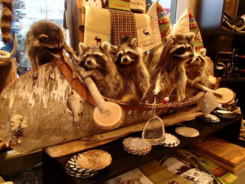 large_canoeing_raccoons.jpg