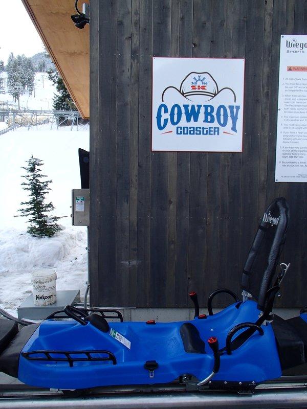 large_cowboy_coaster.jpg