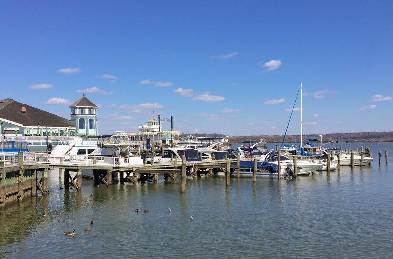large_dock_in_Alexandria.jpg