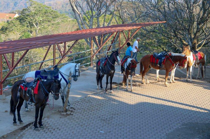 large_horses_wai..the_caldera.jpg