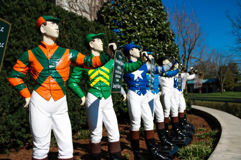 large_jockey_silks__1_of_1_.jpg