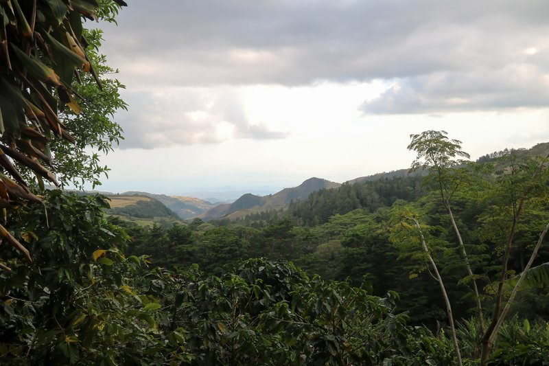 large_overlook_from_El_Trapiche.jpg