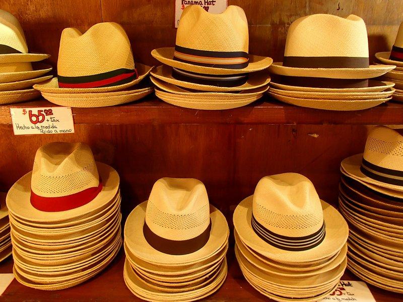 large_panama_hats__1_of_1_.jpg