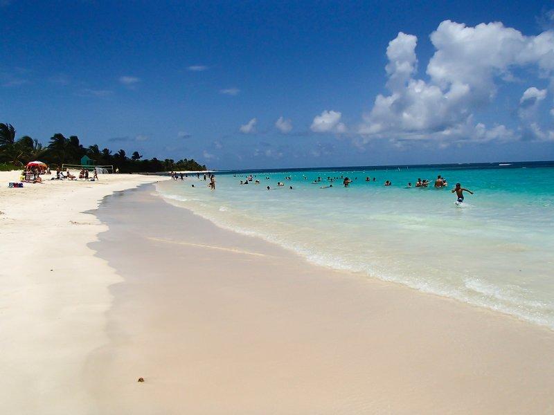 large_white_sand_beach__1_of_1_.jpg