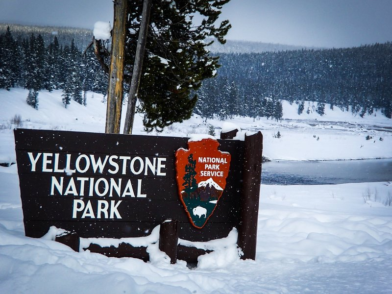 large_yellowstone_sign__1_of_1_.jpg
