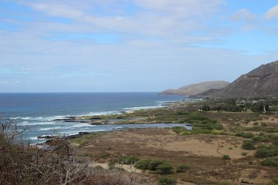 overlooking Makapu'u trail