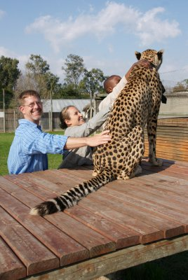 petting second cheetah