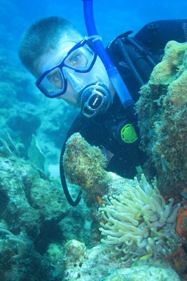 steve with anemone