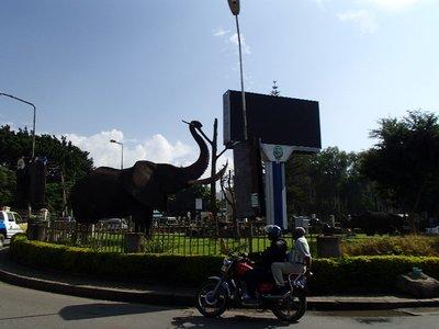 traffic circle in town
