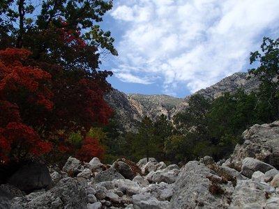 trail of rocks