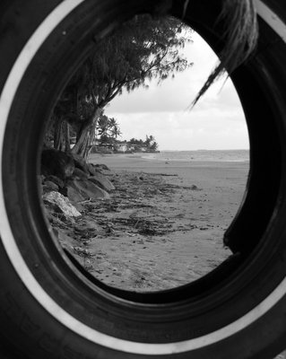 view through the rope swing