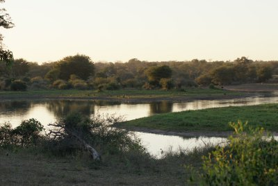 watering hole at sundown