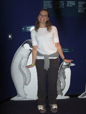 I_am_talle..penguin.jpg