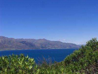 Lake_Hawea_Pic_3.jpg