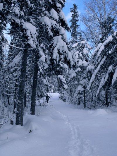 Big Snow in November