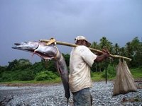 Our friend George with the approx 45lb Wahoo fish on one side and a bag of sand on the other side