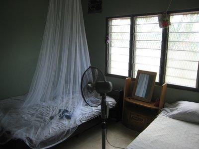 Rommet mitt hos vertsfamilien, Emma og Biggie