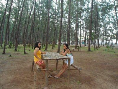 mini forest in Anawangin