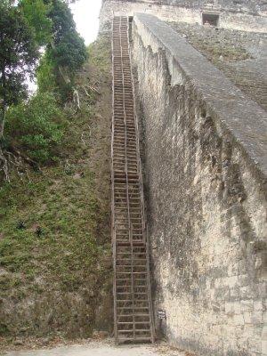 Stairway to heaven...Tikal