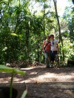 Intrepid rainforest walkers