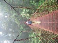 l on bridge.JPG