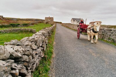 ire_p3_11_Aran_carriage