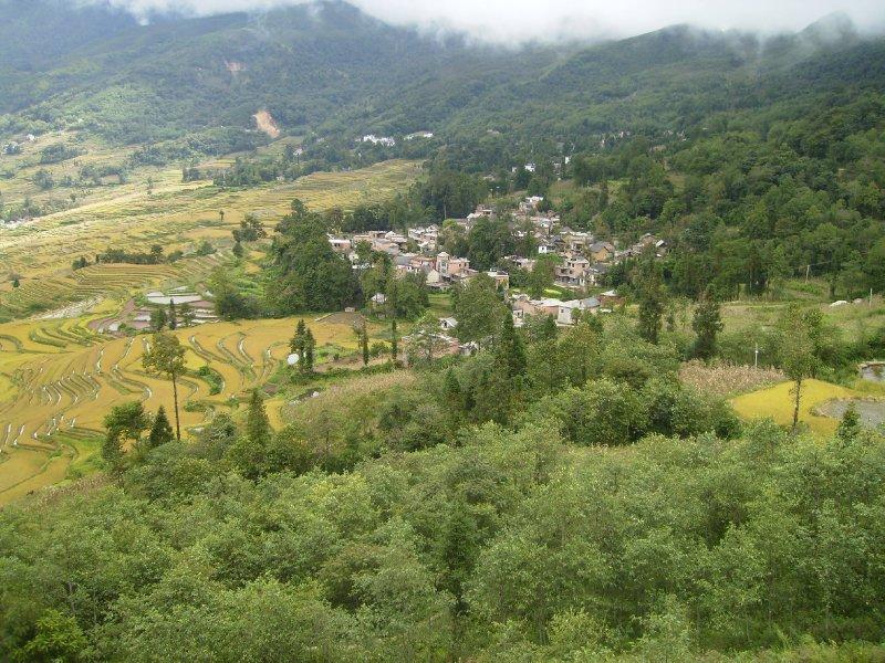 1063 China Yuanyang - Ricefields and Sunnys GH