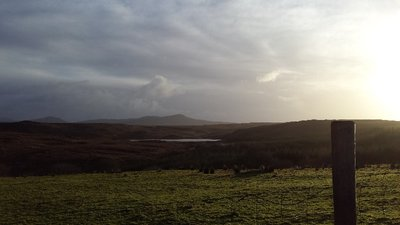Donegal_Driveway.jpg
