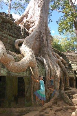 Angkor_Kid..e_Roots.jpg