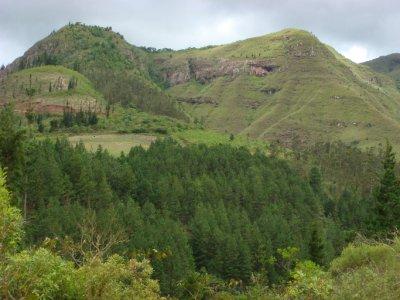 scenery (3)